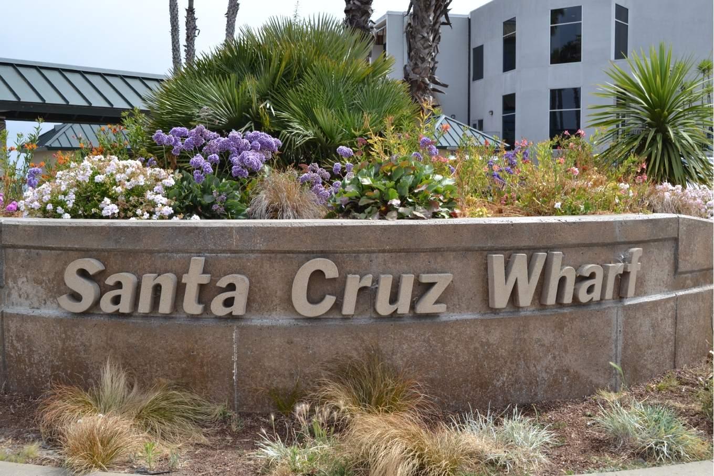 8. Tag  Santa Cruz