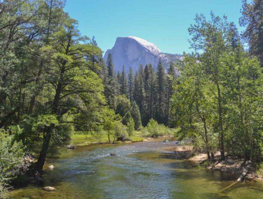 10. Tag - von den Yosemite Falls bis zu Mariposa Grove